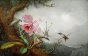 Martin Johnson Heade - Hummingbirds and Orchids, 1880s