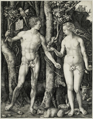 Albrecht Dürer - Adam and Eve, 1504