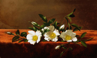 Martin Johnson Heade - Cherokee Roses, ca. 1890