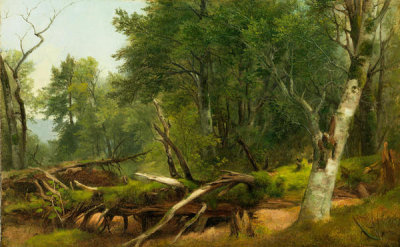 Asher Brown Durand - Forest Scene in the Catskills, between 1855 and 1860